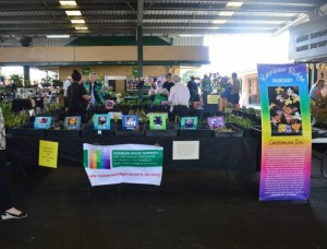 6-collector-plant-fair-resized